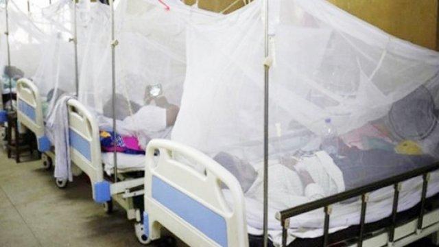 ডেঙ্গু আক্রান্ত হয়ে আরও ২৪১ জন হাসপাতালে ভর্তি