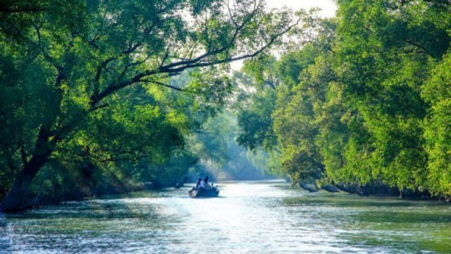 Cyclone Amphan badly damages parts of Sundarbans